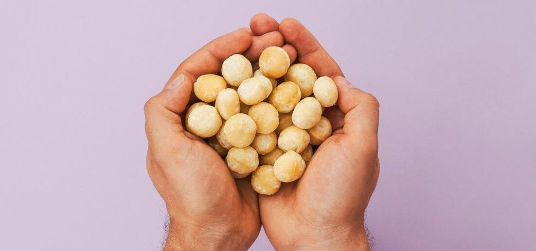 Jak poznáte nejlepší makadamové ořechy?