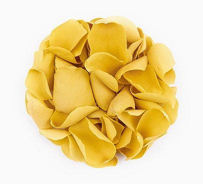 Jedlé žlté kvety ruží