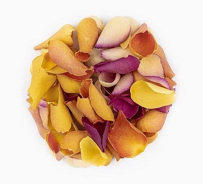 Jedlé květy směs růží