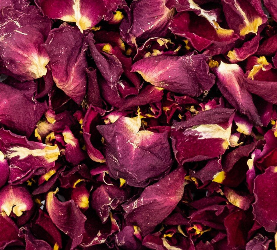 Jedlé malé květy růže 9 image