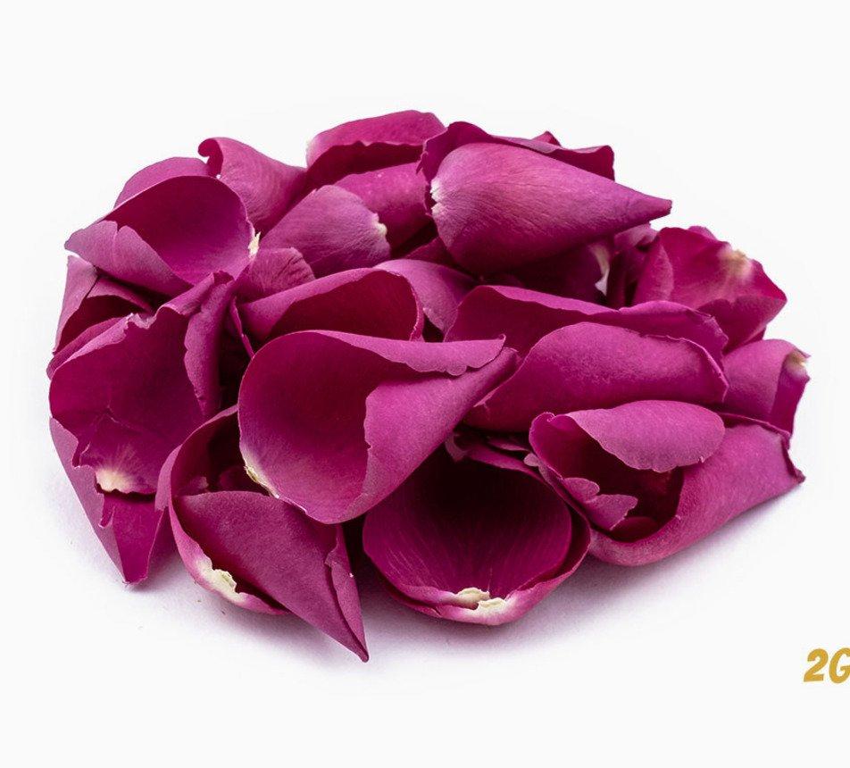 Jedlé růžové květy růže