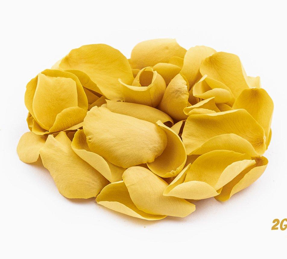 Jedlé žluté květy růže