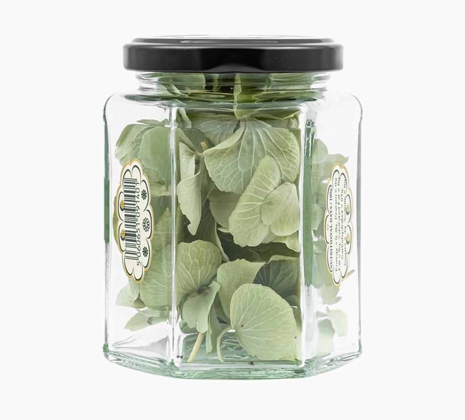 Jedlé zelené květy hortenzie