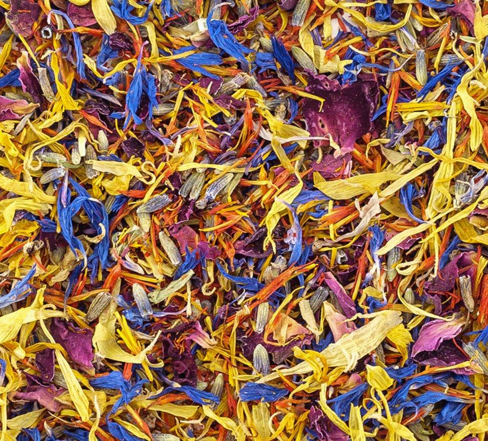 Jedlé pestrobarevné květy