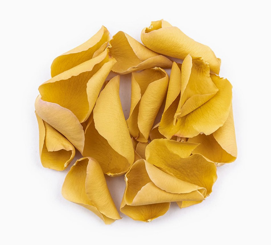 Jedlé zlaté květy růže