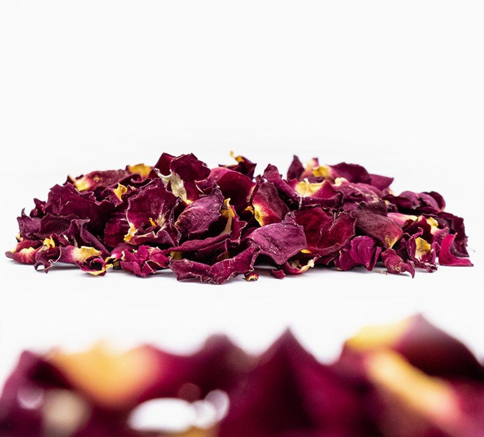 Jedlé malé květy růže 6 image