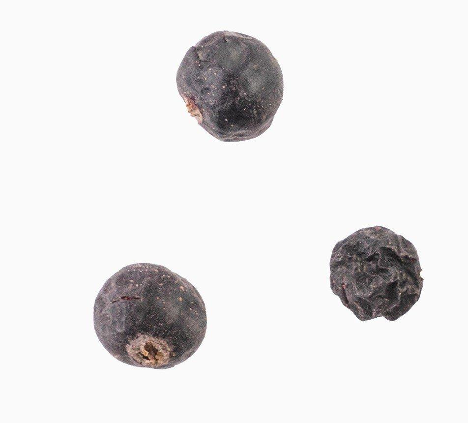 Černý rybíz lyofilizovaný