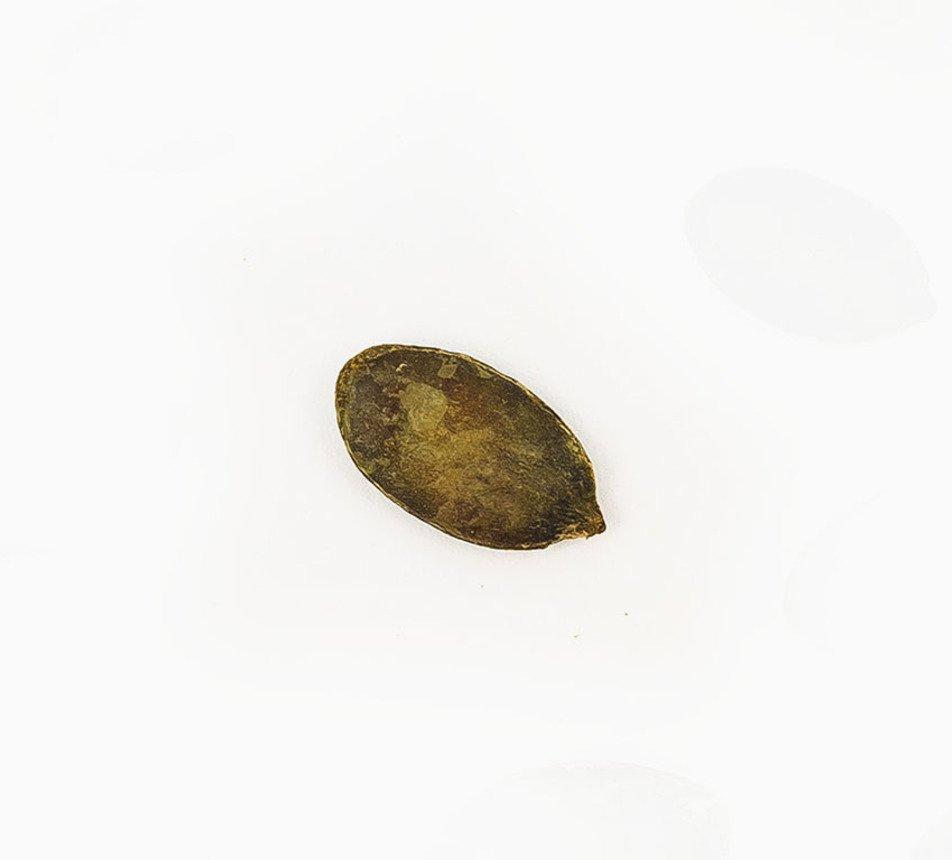 Dýňová semínka pražená solená