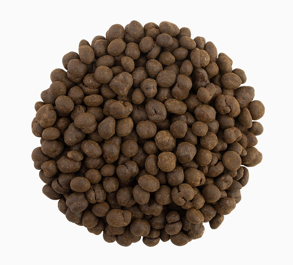 Kávová zrna pražená v hořké čokoládě s mocca
