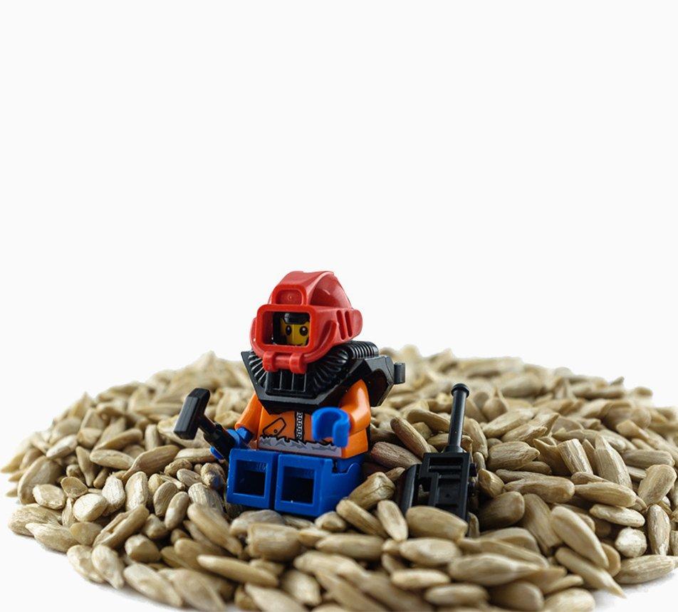 Slunečnicová semínka loupaná